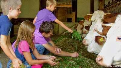 Bauernhofurlaub zum mithelfen in Bayern