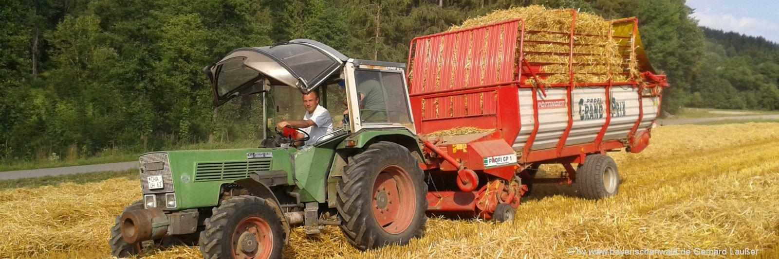 Urlaub auf dem Bauernhof mit Traktor fahren für Erwachsene & Gruppen