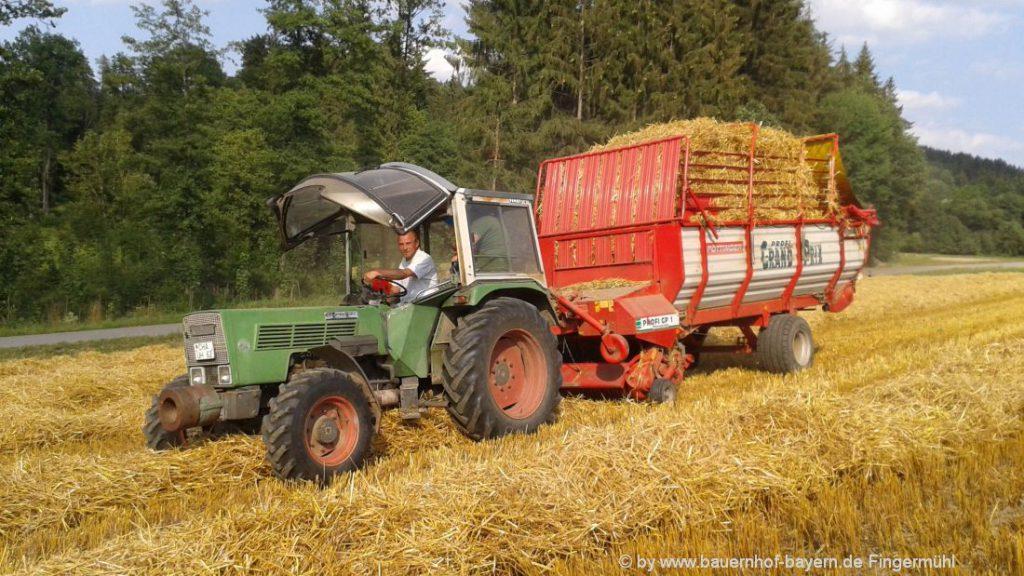 Erlebnisbauernhof in Bayern Traktor fahren